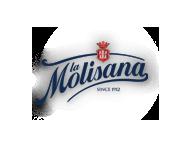 logo-molisana.png